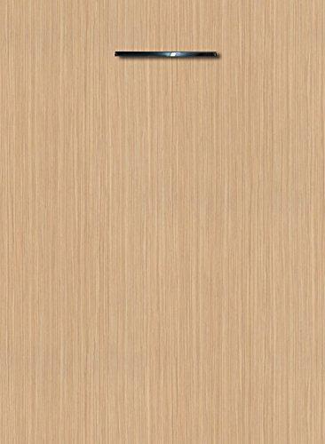 Küchenschrank Unterschrank Front für Geschirrspüler FE (Breite 45cm-vollintegriert, 27 Zebrano sand)