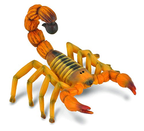 CollectA Yellow Fat-Tailed Scorpion Figure - 1