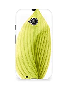 Amez designer printed 3d premium high quality back case cover for Motorola Moto E2 (green leaf)