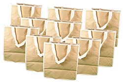 Lot of 10 Medium Kraft Tote Plain Natural Non Woven Shopping Bag #3303