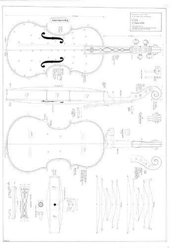 12 Viola by Gaspara da Salo