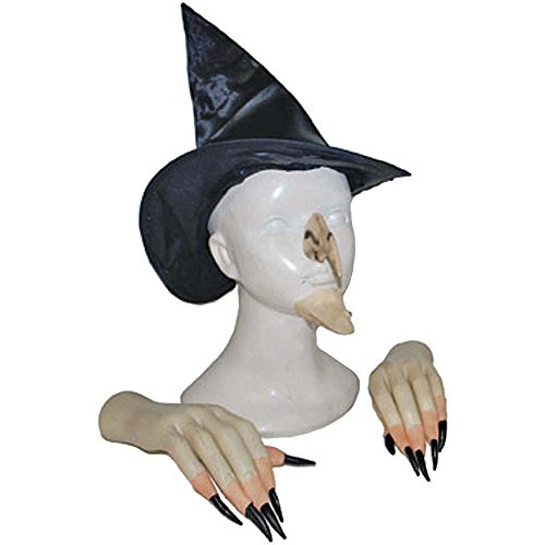 Wicked Witch Costume Accessory Kit - One Size