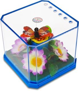 New! Amazing Solar Butterfly Garden - 1