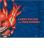 Larry Sultan & Mike Mandel (Hardback) - Common