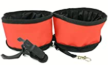 Sir Wag Collapsible Dog Bowls 2 Pack and Pet Selfie Clip - Folds Flat - 3 Item Bundle