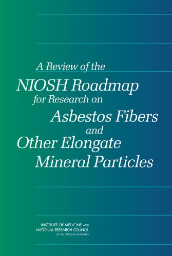A Review of the NIOSH Roadmap for Research on Asbestos Fibers and Other Elongate Mineral Particles