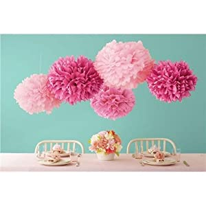 Martha Stewart Crafts Pom Poms, Pink, 2 Sizes