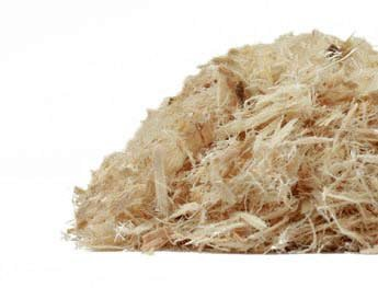 Slippery Elm Bark Dried ~ Organic ~ 1 Ounce ~ Cut And Dried