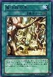 遊戯王カード 【 魔法族の里 】 CSOC-JP061-R 《クロスローズ・オブ・カオス》