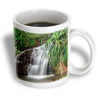Danita Delimont - Richard Duval - Waterfalls - Usa, Hawaii, Kauai, Lihue. Waterfall Along The Trail To Queens Bath. - 11Oz Mug (Mug_191820_1)