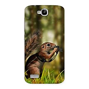 Special Squirrel Multicolor Back Case Cover for Honor Holly