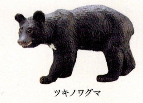 カプセルQミュージアム 日本の動物コレクション8 日本アルプス 雷鳥が棲む岳 ツキノワグマ