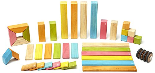 Tegu Magnetic Wooden Block Set, Tints