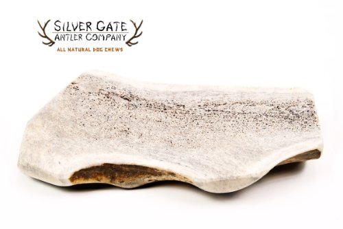 Silver Gate Antlers Elk Antler Split Dog Chews - X LARGE 6-8