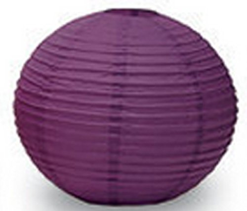 Anleolife Paper Lanterns 10pcs/lot 10''(25cm) Round Paper Lanterns Lamps Festival Wedding Decoration Chinese Paper Lanterns (10'', deep purple) (Rice Paper Lantern 12 compare prices)