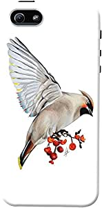 DailyObjects Waxwing Feeding Case For iPhone 5/5S