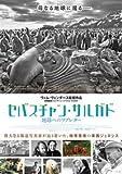 映画 セバスチャン・サルガド 地球へのラブレター パンフレット