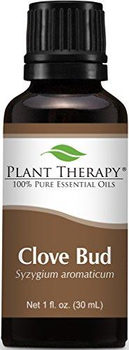 Clove Bud Essential Oil. 30 ml (1 oz). 100% Pure, Undiluted, Therapeutic Grade.