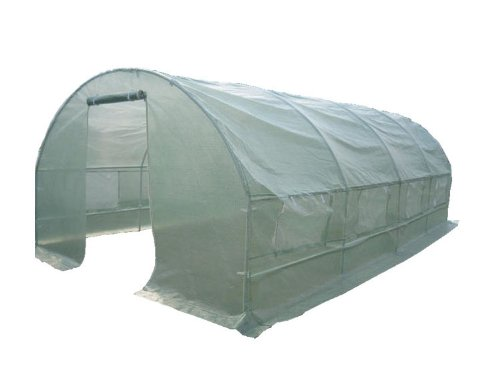 6M x 3M x 2M Walk In Garden Polytunnel Greenhouse Transparent Portable