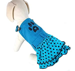 UP Collection Aqua with Polka Dots Dog Dress, Paw Print, Blue, X-Small