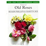 Traditional Old Rosespar Roger Phillips