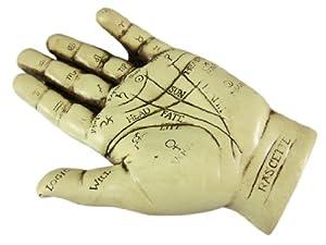 Palmistry Hand Statue Figure Chiromancy Palm Reading
