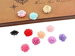 Roes Design Pushpins Drawing Pin 20 Pcs for shcool or office