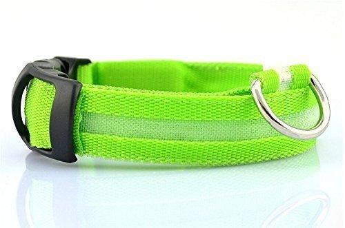 Collare luminoso per cani by DUCOMI (L, Verde)