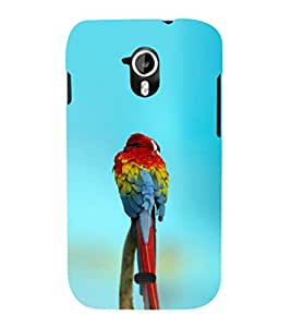 EPICCASE spectacular parrot Mobile Back Case Cover For Micromax A116 Canvas HD (Designer Case)