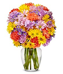 Fern - eshopclub Same Day Flower Delivery - Online Flower - Anniversary Flowers - Wedding Flowers Bouquets - Birthday Flowers - Send Flowers