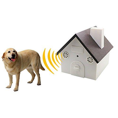 Best Dog Barking Deterrent