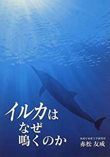 イルカはなぜ鳴くのか