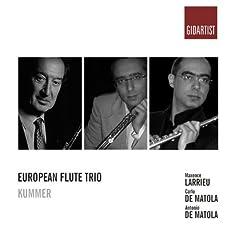 Flute Trio in G Major, Op. 24: I. Allegro moderato