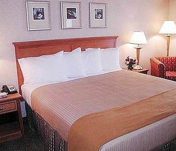 Holiday Inn Express Simply Smart Firm Standard Complete Pillow Set (4 Pillows)