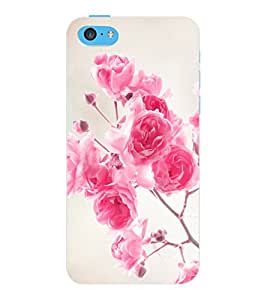 ColourCraft Beautiful Roses Design Back Case Cover for APPLE IPHONE 5C