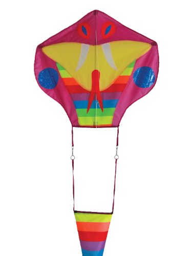 In the Breeze Serpent Dragon Kite with 38-Feet Tail