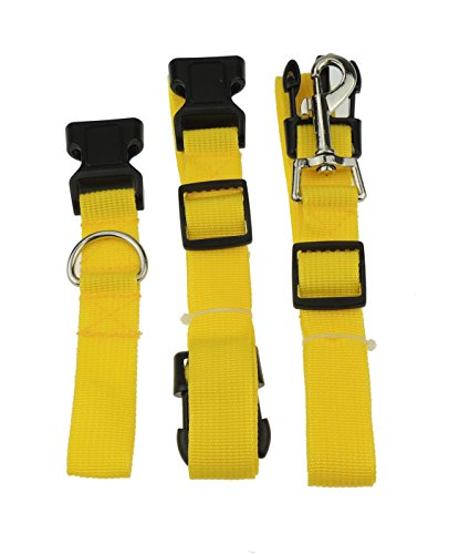Dogs Womens Mens Dog Leash & Belt or Runners