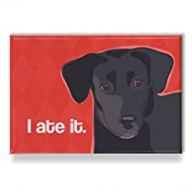 Labrador Retriever Fridge Magnet - I Ate It - Black Labrador