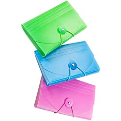 flp llc 9862 Creative Options, Coupon Holder (ASSORTED COLORS)