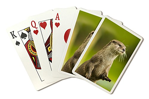 River Otter Standing (Playing Card Deck - 52 Card Poker Size with Jokers)