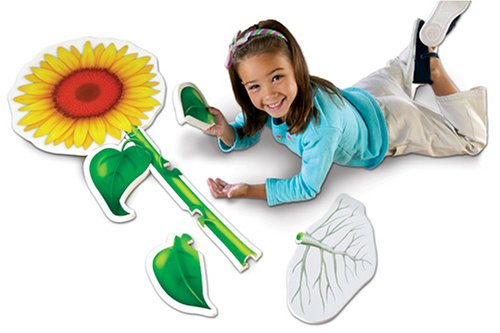 Cheap Fun Learning Resources Sunflower Foam Floor Puzzle (B000EGAMSK)