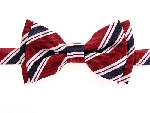 Retreez Preppy Stripe Pattern Woven Microfiber Pre-tied Boy's Bow Tie - Maroon Red and Navy Blue - 24 months - 4 years