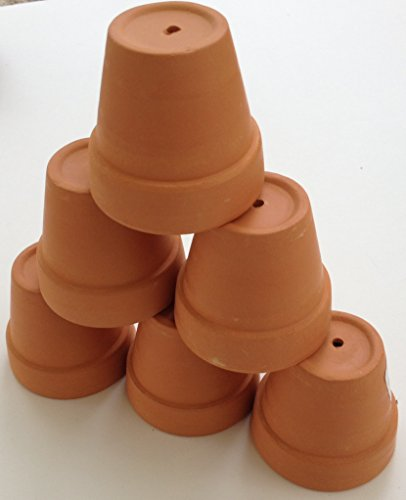 Mini terra cotta clay pots set of 6 for plants for Small clay pots