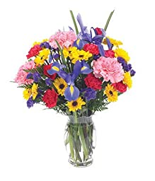 Petunia - Eshopclub Same Day Flower Delivery - Online Flower - Anniversary Flowers - Wedding Flowers Bouquets - Birthday Flowers - Send Flowers