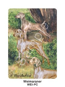 Best Friends Playing Cards, by Ruth Maystead - Weimaraners - 1