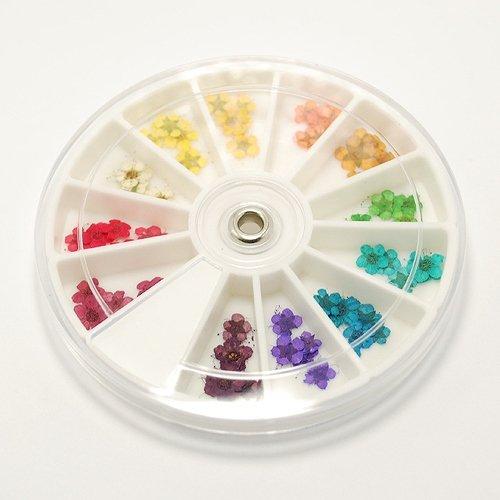 押し花 12色60枚 お試しセット1 (ケース付!)ジェルネイル デコ UVレジン に♪