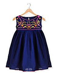 Budding Bees Girls Blue Printed Embroidered Printed Fit & Flare Dress