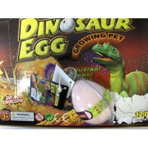 Hatching Dinosaur In Egg Case Pack 12