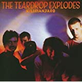 Kilimanjaropar The Teardrop Explodes