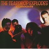 Kilimanjaroby Teardrop Explodes